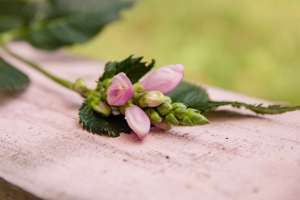 Blumenladen-Zinnowitz-Strauß-Rose-und-Dornen-10