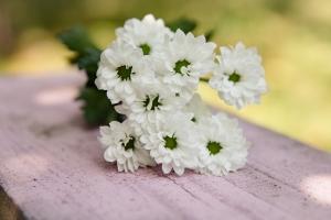 Blumenladen-Zinnowitz-Strauß-Rose-und-Dornen-2