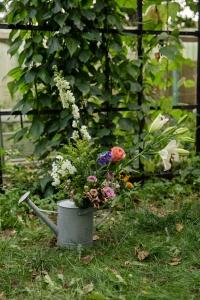 Blumen-Zinnowitz-Florist-Rosen und Dornen-zart-September-Blüte-blumenstrauß-rose-phlox-lilie-rittersporn-solidaga-wachsflower-scharfgabe-skabiose-diestel-sonnenblume-cheleone-rot-rosa-gelb-weiß-blau