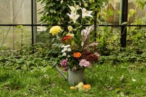 Blumen-Zinnowitz-Florist-Rosen und Dornen-zart-Oktober-Blüte-blumenstrauß-rose-lilie-Hagebutte-barthnelke-kohl-chrysantheme-Asclepia-sedum-laub-Johanniskraut-Zierobst-17