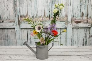 Blumenladen-Zinnowitz-Rosen-und-Dornen-Florist-Strauß-Ranunkel-Gerbera-Chemeone-Kamille-Hiazinthe-Ginster-Tulpe-Eustoma-Fresie-Solidago-hübsche-Blumen-einzeln-11