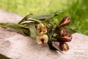 Florist-blumenladen-Zinnowitz-rosen-und-dornen- Rot-Rose-hochzeit-blumenstrauß-5