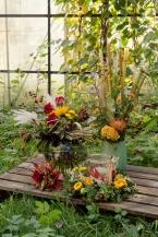 Blumenladen-blumen-usedom-zinnowitz-rosen-und-dornen-herbst-gestecke-geschenk (2 von 9)