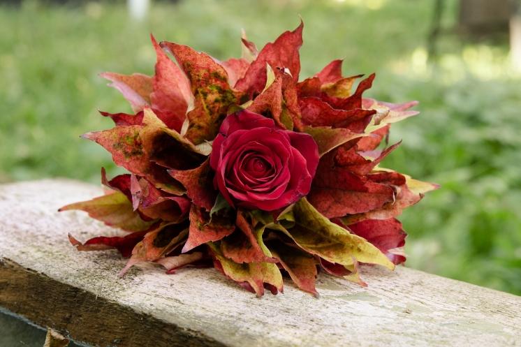 Blumenladen-blumen-usedom-zinnowitz-rosen-und-dornen-herbst-gestecke-geschenk (9 von 9)
